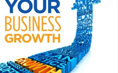 Podcast Guest Interview:  Accelerate Your Business Growth (Part 2)